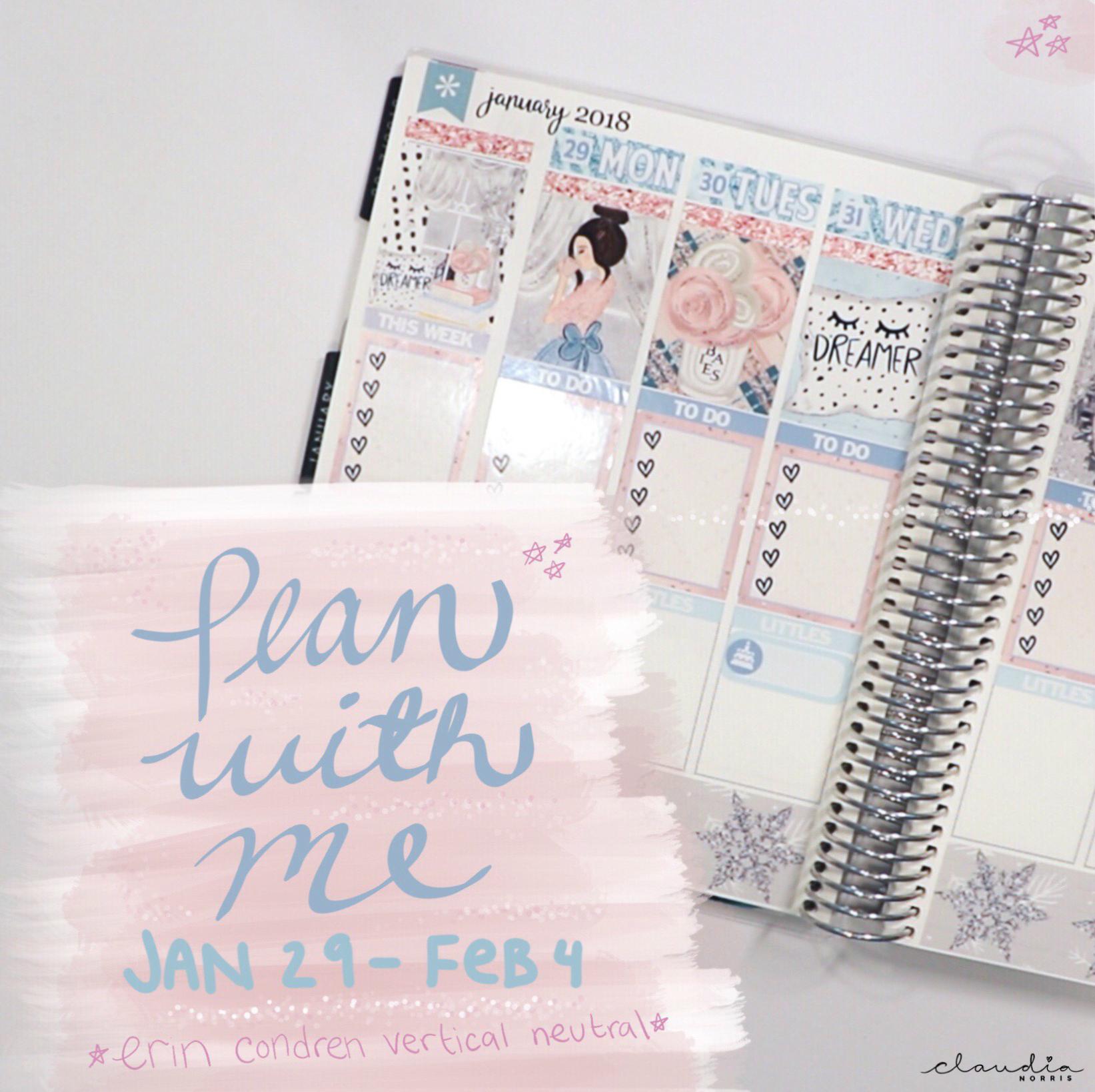 Plan With Me Erin Condren Video